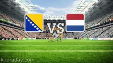 صورة نتيجة | مباراة هولندا والبوسنة والهرسك اليوم 11 أكتوبر 2020 بدوري الأمم الأوروبية
