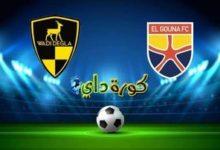 صورة مشاهدة مباراة الجونة ووادي دجلة بث مباشر اليوم الدوري المصري